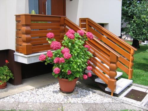 Stopnišne ograje  (5)